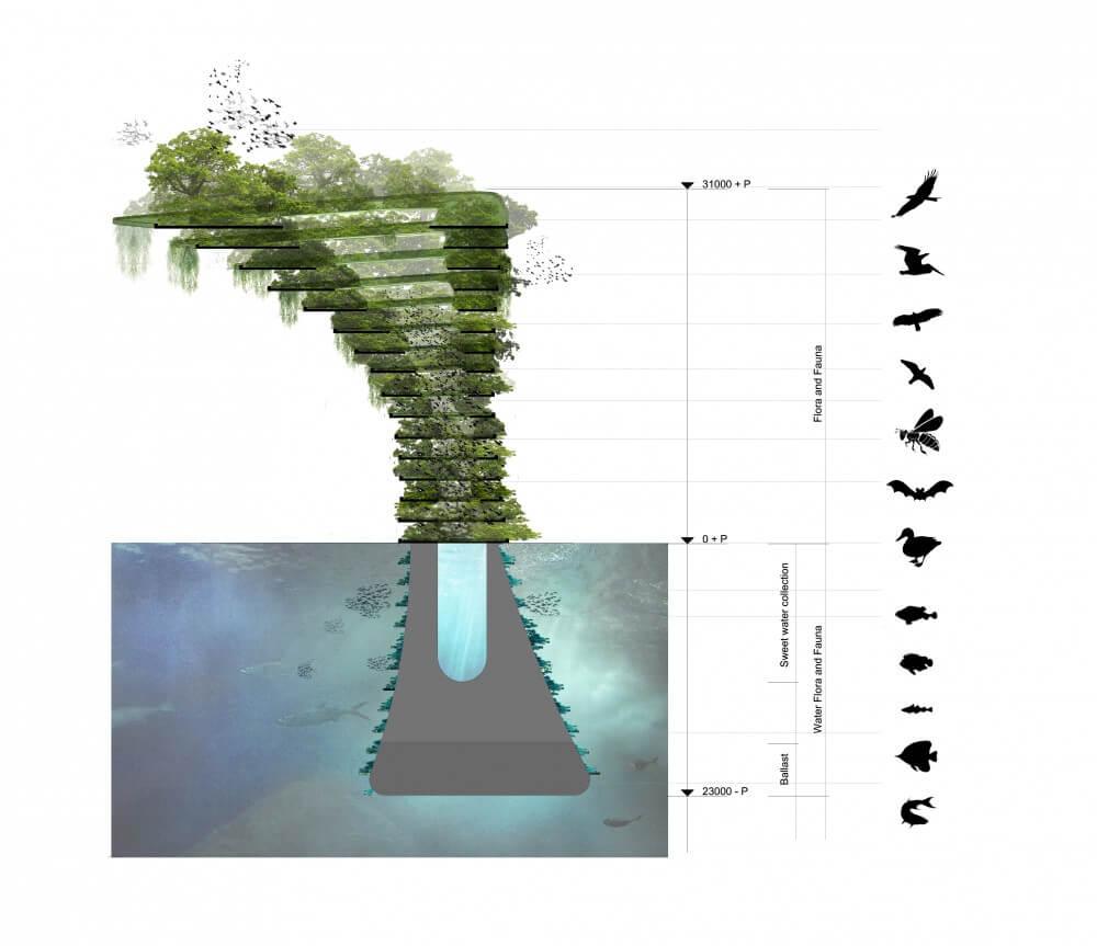 sea tree 2